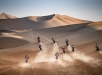 Mass start of the 5th stage of Abu Dhabi Desert Challenge, Hamim on March 29th. 2018