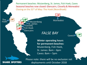 season-for-sharks-cape-town